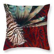 An Invasive Indo-pacific Lionfish Throw Pillow