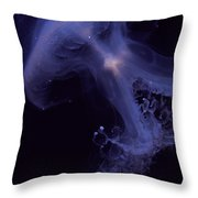 An Iridescent Blue Southern Tailed Throw Pillow