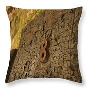 An Old Door At A Prison Throw Pillow