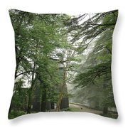 An Old Gothic Style Church In The Indian City Of Mcleodganj Throw Pillow