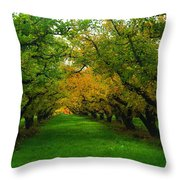 An Orchard Row  Throw Pillow
