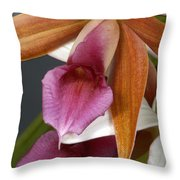 An Orchid, Probably A Cattleya Hybrid Throw Pillow