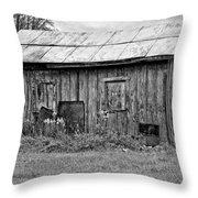 An Orderly World Monochrome Throw Pillow by Steve Harrington