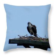 An Osprey In Maryland Throw Pillow