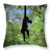 An Unidentified Monkey Hangs Throw Pillow