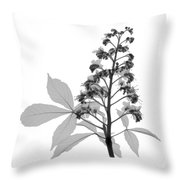 An X-ray Of A Chestnut Tree Flower Throw Pillow