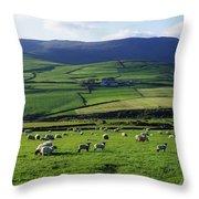 Anascual, Dingle Peninsula, Co Kerry Throw Pillow