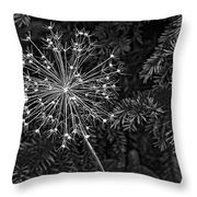 Anatomy Of A Flower Monochrome 2 Throw Pillow