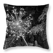 Anatomy Of A Flower Monochrome Throw Pillow