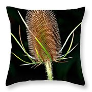 Anatomy Of A Weed Throw Pillow
