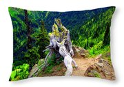 Ancient And On The Edge Throw Pillow