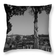 Ancient Cedars And Tombstones Throw Pillow