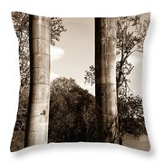 Ancient Columns By The River Throw Pillow