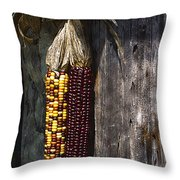 Ancient Corn Throw Pillow