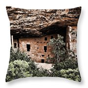 Ancient Peoples Throw Pillow