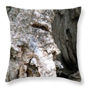 Ancient Rock Cliff Face At Rockwood Conservation Area  Throw Pillow