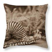 Ancient Snail Throw Pillow