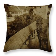 Ancient Surroundings Throw Pillow