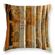 Ancient Thoughts Throw Pillow