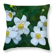 Anemone Cluster 1 Throw Pillow
