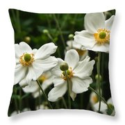 Anemonae Cluster 8 Throw Pillow
