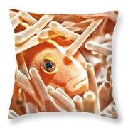 Anemonefish Closeup Throw Pillow