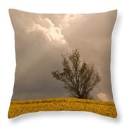 Angel From Heaven Throw Pillow