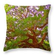 Angel Oak Tree1 Throw Pillow