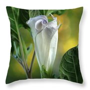 Angel's Trumpet Bud Throw Pillow