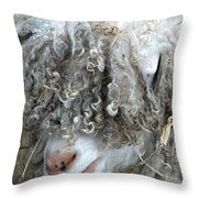 Angora Goat Throw Pillow