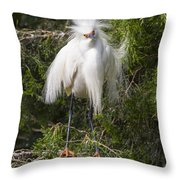 Angry Bird Snowy Egret In Breediing Plumage Throw Pillow
