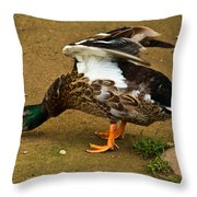 Angry Mallard Throw Pillow