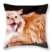 Angry Orange Tabby Throw Pillow