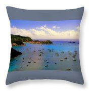 Anguilla's Softness Throw Pillow