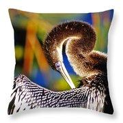 Anhinga - Fs000043 Throw Pillow