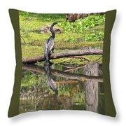 Anhinga And Reflection Throw Pillow