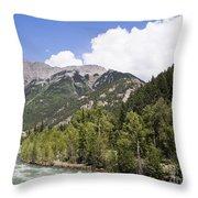 Animas River Colorado Throw Pillow