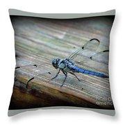 Anisoptera Throw Pillow
