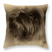 Anne Appeals Throw Pillow