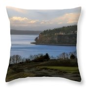 Another Fine Prospect Throw Pillow