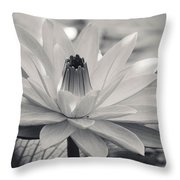Ansel's Lily Throw Pillow