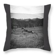 Antelope Jumping In Full Stride Throw Pillow