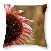 Antique Cone Flower Throw Pillow