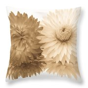 Antique Floral Duo Throw Pillow