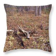 Antler Log Throw Pillow