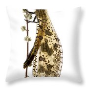 Antlion Fort Fordyce Nature Reserve Throw Pillow