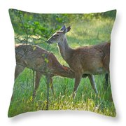 Any Day Now Throw Pillow
