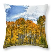 Apen Trees In Fall Throw Pillow