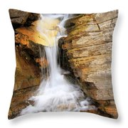 Apikuni Throw Pillow