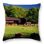 Appalachian Barn Yard Throw Pillow